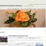 neue Homepage für Kunde Haus Möhrle online - Internetagentur / Werbeagentur / Webagentur BOS Medien