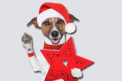weihnachtsangebote_werbeagentur